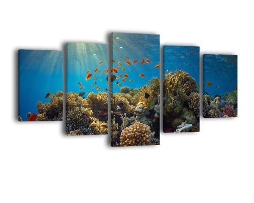 Leinwandbild Korallenriff LW389 Wandbild, Bild auf Leinwand, 5 Teile, 210 x 100 cm, Kunstdruck Canvas, XXL Bilder, Keilrahmenbild, fertig aufgespannt, Bild, Holzrahmen, Unterwasser, Riff, Tauchen