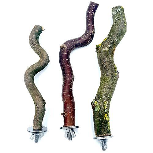 3 gewellte Sitzstangen Korkenzieher-AST (15-26 cm): Vogelsitzstange Naturholz | Vogelkäfig Zubehör | für Wellensittich Käfig | Wellensittich Spielzeug | Vogel Spielplatz | Wellensittich Zubehör