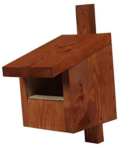 Vogelhaus für Redstarts, Amseln, Rotkehlchen und Turmfalken - braun