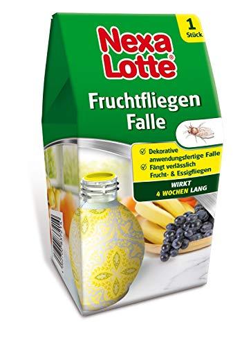 Nexa Lotte Fruchtfliegenfalle, schöne, dekorative Obstfliegen Falle zum Abfangen von Fruchtfliegen, Obst und Essigfliegen, 1 Falle mit 10 ml Lockstoff