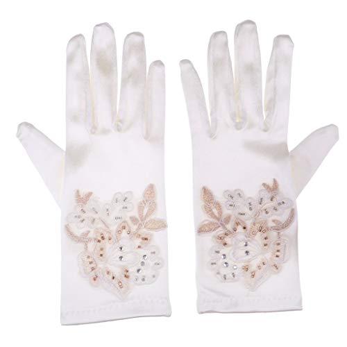 Lannister Fashion Paar Sonnenschutz Braut Handschuhe Netzhandschuhe Spitzenhandschuhe Geschenke Für Frauen Brauthandschuhe Champagner Fäustlinge Handschuh (Color : Champagner, Size : 22cm)