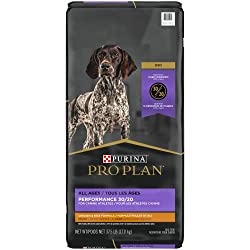 Pro Plan Dog Food for GSD weight gain