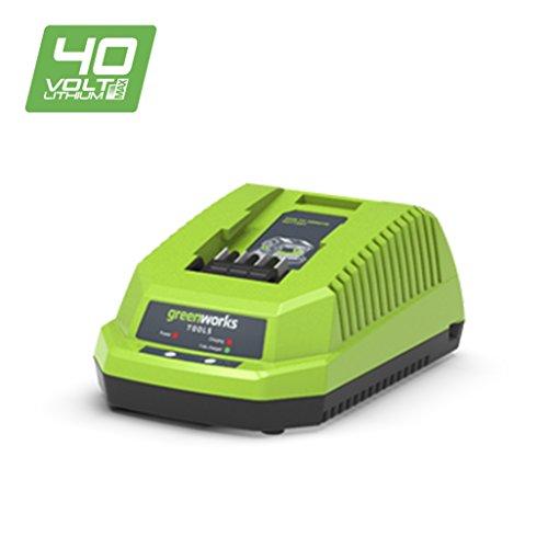Greenworks Tools oplader (zonder batterij) Universele oplader (EU + UK). groen