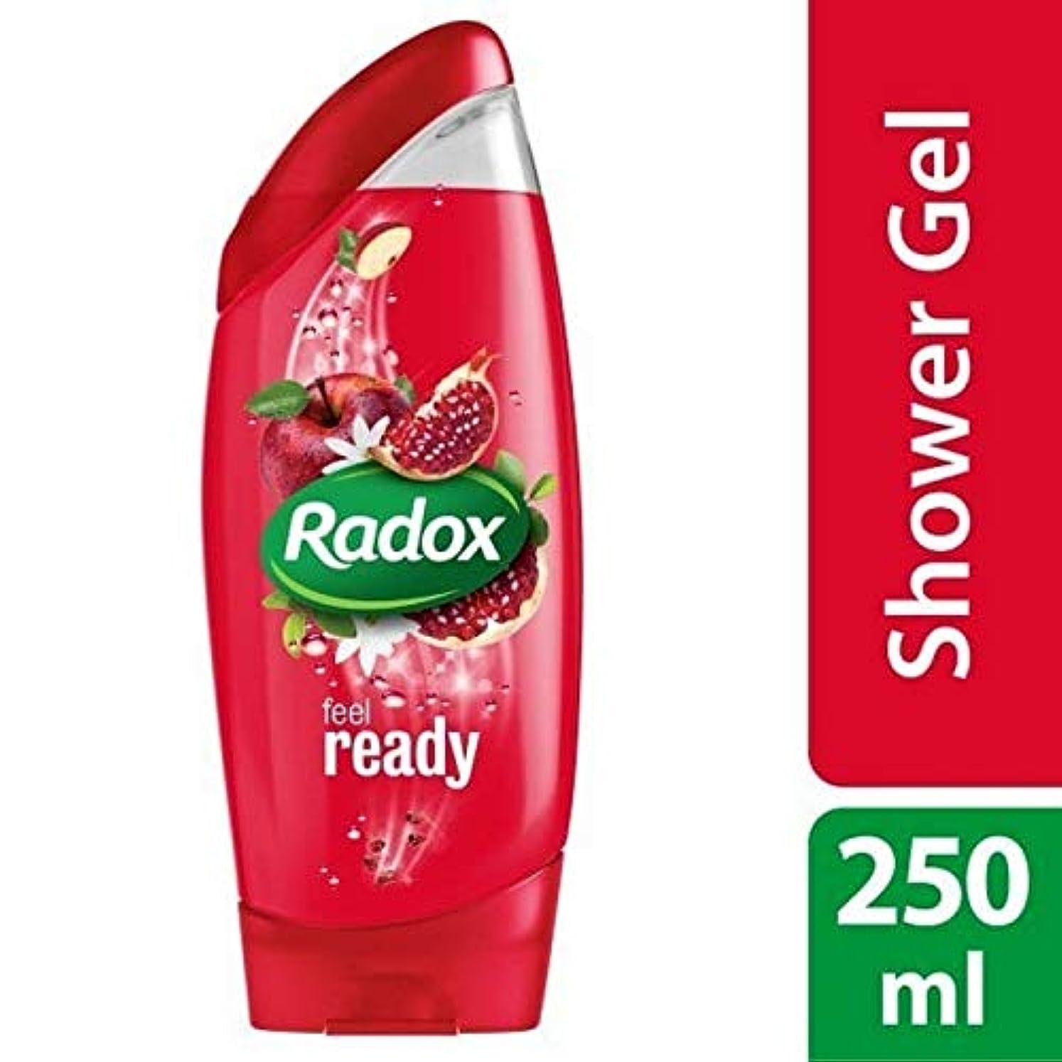 未亡人統治可能メール[Radox] Radoxは準備ができてシャワージェル250ミリリットルを感じます - Radox Feel Ready Shower Gel 250ml [並行輸入品]