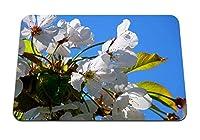 22cmx18cm マウスパッド (木桜春の花開花) パターンカスタムの マウスパッド