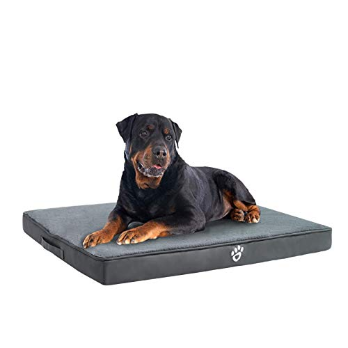 FRISTONE Orthopädisches Hundebett für Kleine Mittlere Große Hunde, Waschbar Hundematratze, Eierkistenform Schaum Hundekissen mit Abnehmbarem Bezug,Grau