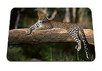 26cmx21cm マウスパッド (ヒョウウッドダウン大きな猫捕食者) パターンカスタムの マウスパッド