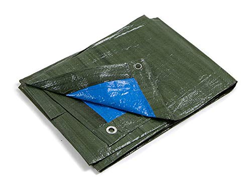 Kippen 6068A Bâche à œillets bicolore, dimensions 2 x 3 m, vert/bleu