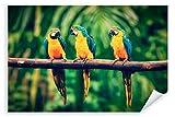 Postereck - Poster 2596 - Papagei, Vogel Natur bunt Tier