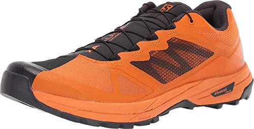 SALOMON Shoes X Alpine/Pro
