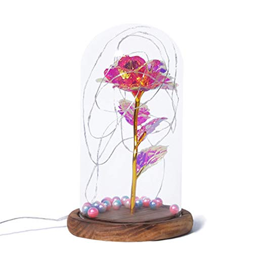 GPWDSN betoverde roze, kleurrijke gouden folie elegante glazen koepel met LED-verlichting dennenbodem, magische geschenken romantische huis decor voor Valentijn geschenk bruiloft verjaardag