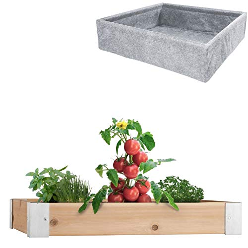 AHH Cedar Raised Garden Bed Kit Anodized Brushed Aluminum Red Cedar Wood Ideal Outdoor Raised Garden Beds for Vegetables, Herbs or Flowers 4x4 5.5 inches deep