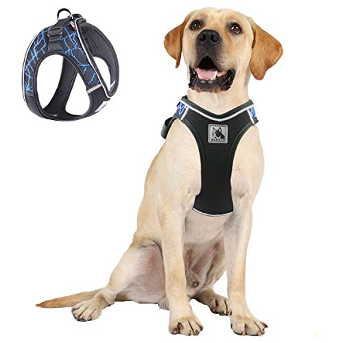 ACKERPET Comfort Step in Dog Harness Easy to Put on Small Dog Harness Choke Free Adjustable Pet Vest No Pull Outdoor Sport Vest Harness Reflective Soft Padded Vest for Small Medium Dogs(L, Blue)