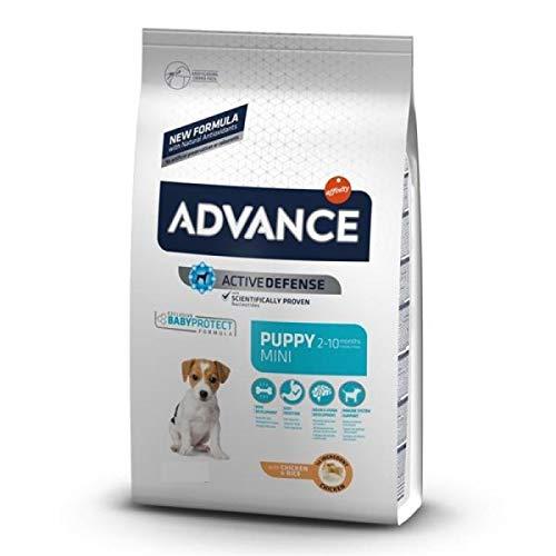Affinity Advance - Pienso para Perros Cachorros Mini Advance Baby Protect Pollo y arroz ⭐