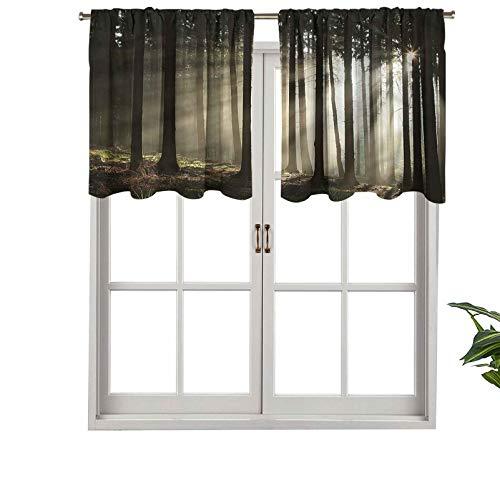 Hiiiman Cenefas de cortina con bolsillo para barra, diseño de vigas de sol, bosque, juego de 2, 42 x 36 pulgadas, aislamiento térmico para sala de estar