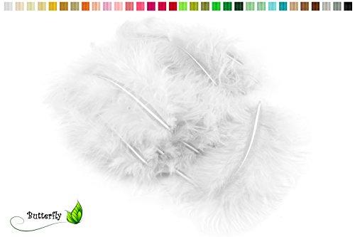 20 Flaumfedern 8-12cm (weiß 029) // Marabufedern Bastelfedern Hühnerfedern Dekofedern Schmuckfedern Federn