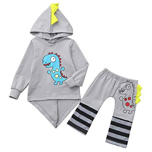 Pochers Pochers Kleinkind Baby Jungen MäDchen Dinosaurier Hoodie Tops + Patchwork Gestreiften Hosen Outfits