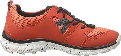 Ecco Biom Trail Kids, Low-Top Niñas, Rojo (Coral Blush/Coral BLUSH-BLACK59457), 31 EU