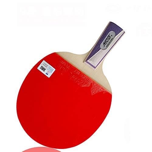 Sale!! SSHHI 9 Star Ping Pong Racket Set,Offensive Table Tennis Bats, for Professional Training, Sol...