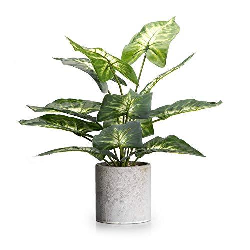 """Velener 15"""" Artificial Potted Green Leaf Plant in Pot for Desk Top Decor (Taro Leaf)"""