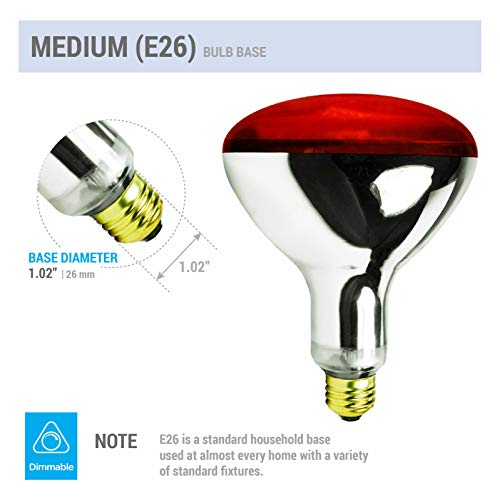 250R40/1 250-Watt, Incandescent R40 Reflector, Clear Head Lamp, Heat Flood Lamp Light Bulb, E26 Standard Medium Screw Base, 120V, 6,000 Hour Rated (Pack of 2-RED-Heat Lamps)