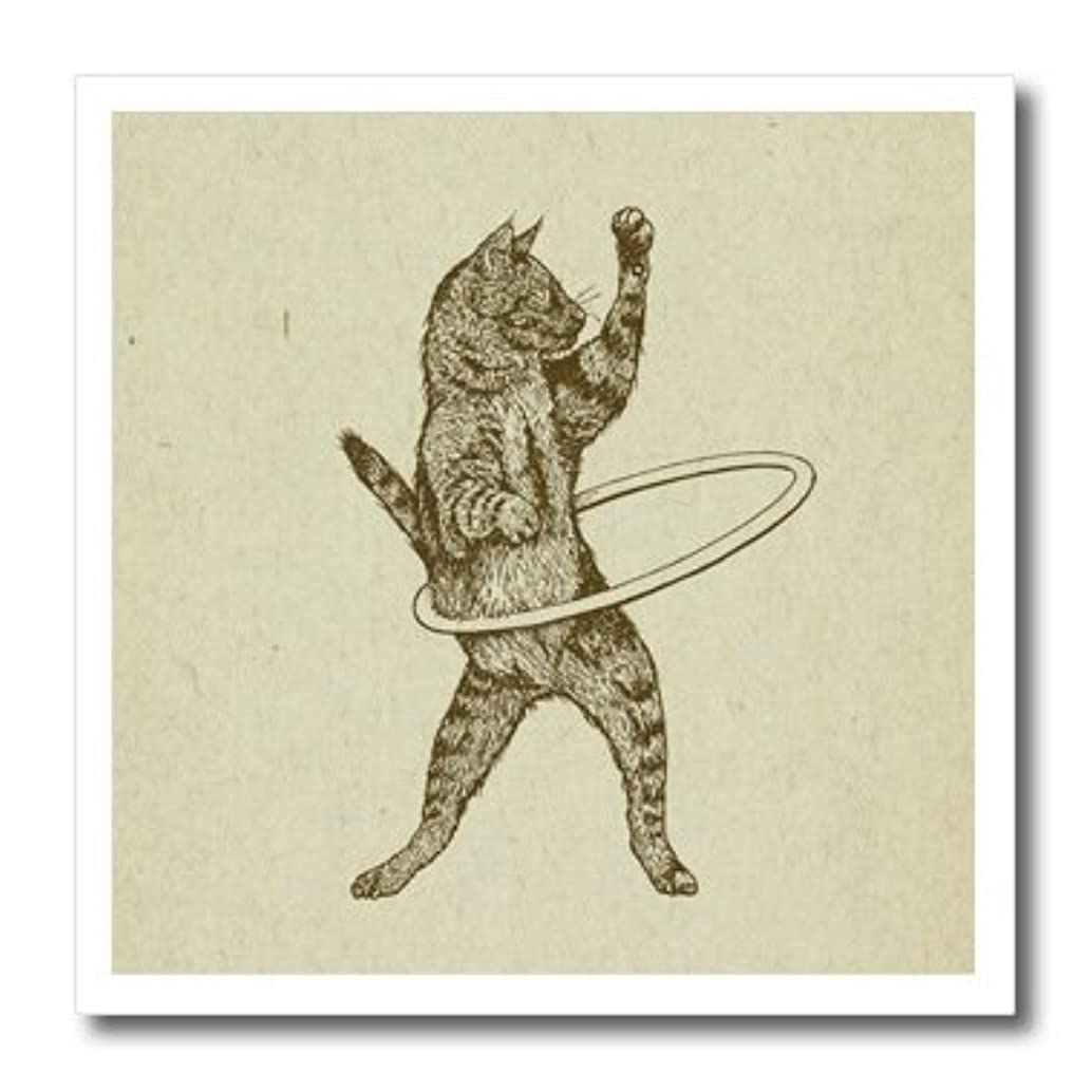 3dRose ht_223283_1 Hula Kitty- Ink Drawing of Hula Hooping Cat Iron on Heat Transfer for White Material, 8