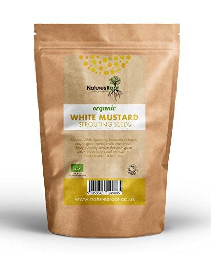 Natures Root Semillas de Mostaza Orgánica (Amarillo) 500g - Semillas para Brotes de Microgreen | Plantación de Jardín | Jardinería Vegetal