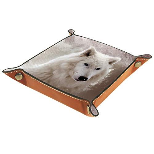 Leder Valet Tray, Würfel Tray Folding Square Holder, Kommode Organizer Platte für Wechsel Münzschlüssel 2White Wolf Animal