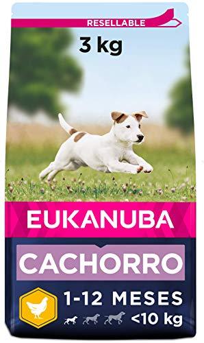 Eukanuba Alimento seco para cachorros de raza pequeña, rico en pollo fresco 3 kg ✅