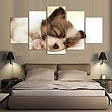 Pintura 5 Imágenes 5 Imágenes / Set Lindo Cachorro Hd Impreso Decoración De La Boda Moderna Sala De Estar Lienzo-Sin Marco