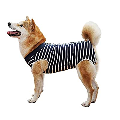 BT Bear Dog Surgery Recovery Suits,Soft Elastic Cotton Pet Recovery T-Shirt After Surgery Clothing Anti Licking Wounds for Small Dogs (M, Blue Stripes)