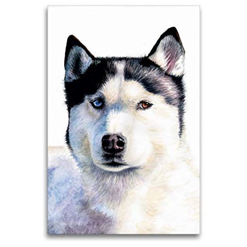 Premium Textil-Leinwand 80 x 120 cm Hoch-Format Husky Blue | Wandbild, HD-Bild auf Keilrahmen, Fertigbild auf hochwertigem Vlies, Leinwanddruck von Nicole Zeug