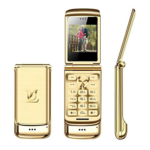 Peedeu 1.6 inch GSM Unlocked Metal Flip Phone with Camera,Mini Dual SIM Dual Standby,2G Easy to Use Phone for Seniors,Kids,Young People (HD Camera, MP3, FM, e-Book, BT dialer, BT Companion)