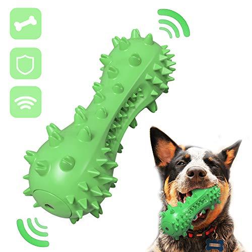 kauspielzeug hund,hundezahnbürste hunde,Zahnreinigungsstab Quietschspielzeug hundespielzeug knochen,hundezahnbürste kauspielzeug,zahnreinigung hund spielzeug,interaktives spielzeug für hunde (Grün)