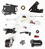 yf gold Electric Bicycle Conversion Kit 24v 250w (nf)