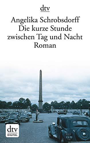 Die kurze Stunde zwischen Tag und Nacht: Roman