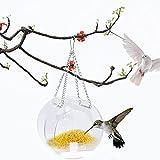 Jinlaili Comedero para Pájaros con Ventosas, Transparente Alimentador de Semillas, Ventana de Casa de Pájaros, Dispensador de Acrílico, Comedero Colgante para Pájaros Silvestres Exterior Jardín Balcon