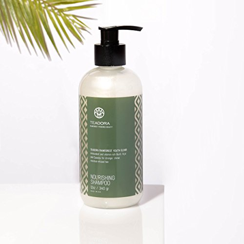 Teadora Sulfate-Free Shampoo, Vegan, Argan Cupuacu Acai Buriti, Gentle, Best for Damaged, Frizzy, Color and Keratin Treated Hair, Moisturizing Shampoo, All Hair Types