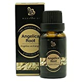 Angelica Root Essential Oil (100% Pure & Natural - Undiluted) - Perfect for Aromatherapy, Relaxation, Skin Therapy & More!15ml(0.49oz)