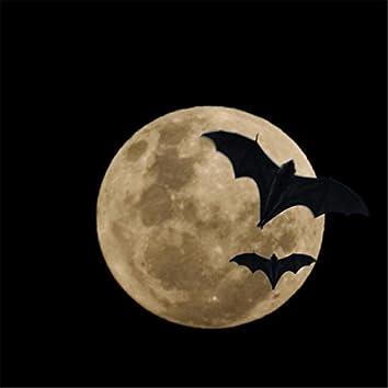 Bat Moon Dance