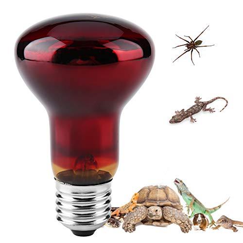 Lampadina riscaldamento rettile, Lampada termica a infrarossi durevole Lampada riscaldante Lampadina rossa per animale rettile e anfibio Lucertola tartaruga serpente Chameleon 220-230V(75W)