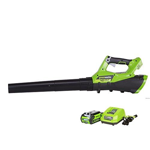 Best greenworks leaf blower 40v