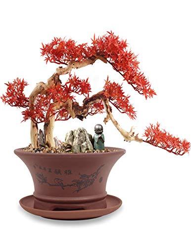 Dahlia 5.4' Bird on Branch Zisha Bonsai Planter/Succulent Pot/Flower Pot w. Saucer, Brown