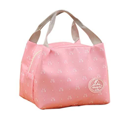 Fantiff Caja de almacenamiento para picnic, bolsa de almuerzo, bolsa de almuerzo, refrigerador térmico, aislado Alimentos
