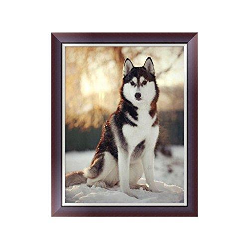 Logres Broderie diamant 5D en forme de chien - Peinture au point de croix - Bricolage - Décoration d'intérieur - Cadeau
