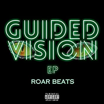 Guided Vision