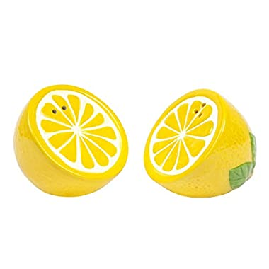 Sunnylife Decorative Ceramic Indoor / Outdoor Salt and Pepper Shaker Set - Lemon Yellow