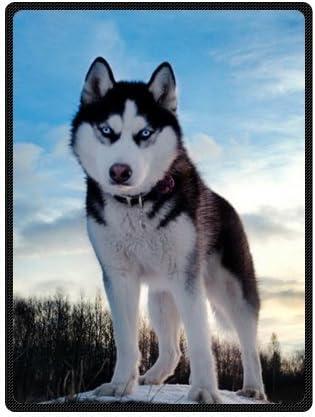 Custom white black husky/huskie dogs Super Soft Warm Fleece Throw Blanket  58 x 80 (Large) by husky Fleece Blanket : Amazon.co.uk: Home & Kitchen