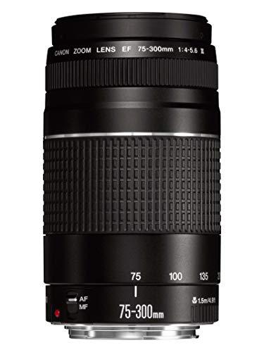 Canon EF 75-300mm f/4-5.6 III Objetivo Para Canon Cámaras Réflex ...