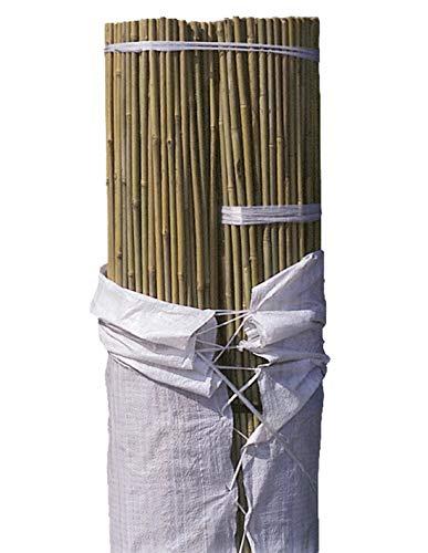 clasificación y comparación Faura 240 / 16-18 – Bamboo Tutor Bullet – 200 piezas para casa